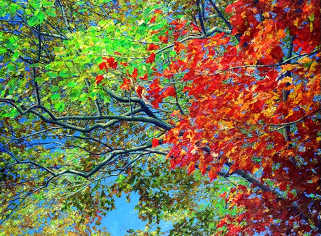 paisajes-coloridos-pintados-al-oleo