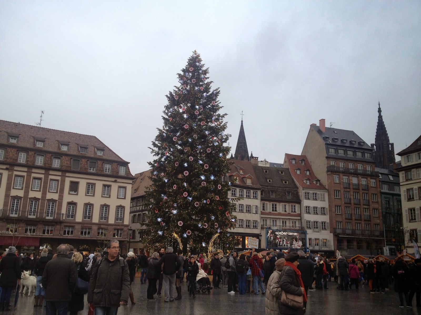 Christmas tree in the Place Kléber, Strasbourg, France