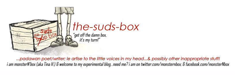 the-suds-box