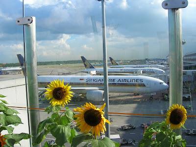 Aeropuerto de Changi,  Aeropuerto de Singapur, Isla de Flores, Isla de Bali, vuelta al mundo, round the world, La vuelta al mundo de Asun y Ricardo