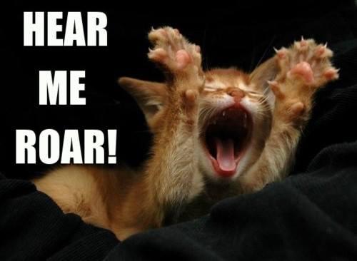 hear me roar gatito - Juego de Tronos en los siete reinos