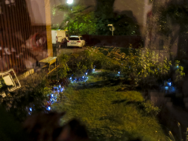 natträdgård