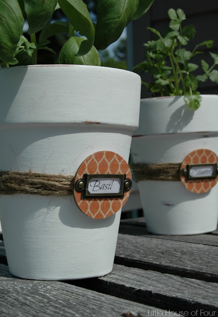 Painted herb pots with custom wood tags