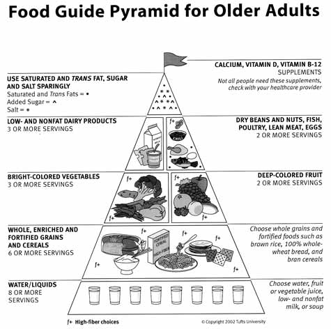 His food guide pyramid for older adults marry even