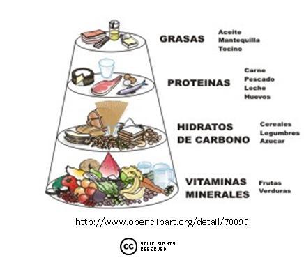 Aprendiendo con la ciencias naturales alimentaci n y for Quimica de los alimentos pdf