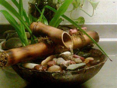 Marcela padilla feng shui las fuentes de agua en feng shui for Fuente agua feng shui