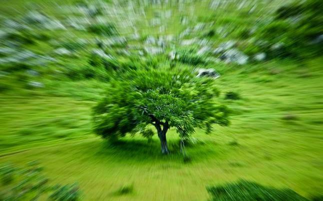 Cómo conseguir un efecto zoom o zooming en tus fotos