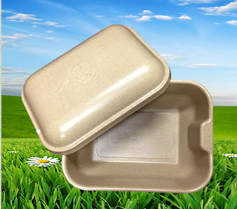 paw pods pet burial product