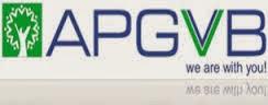 APGVB Results 2015