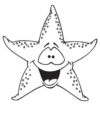 La Chachipedia Las estrellas de mar
