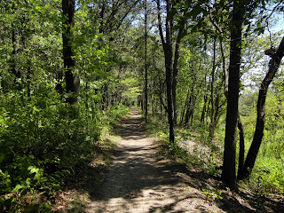 Hiking the Cowles Bog Trail in Indiana Dunes National Lakeshore in Indiana