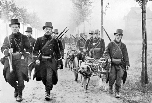Analogue Hobbies The Great War In Greyscale The Dogs