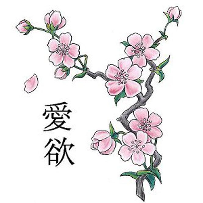 disegni da colorare fiori di ciliegio