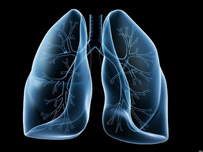How Fast Do Lungs Recover After Quitting Smoking?