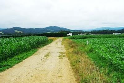 De Viavélez a Porcía, camino