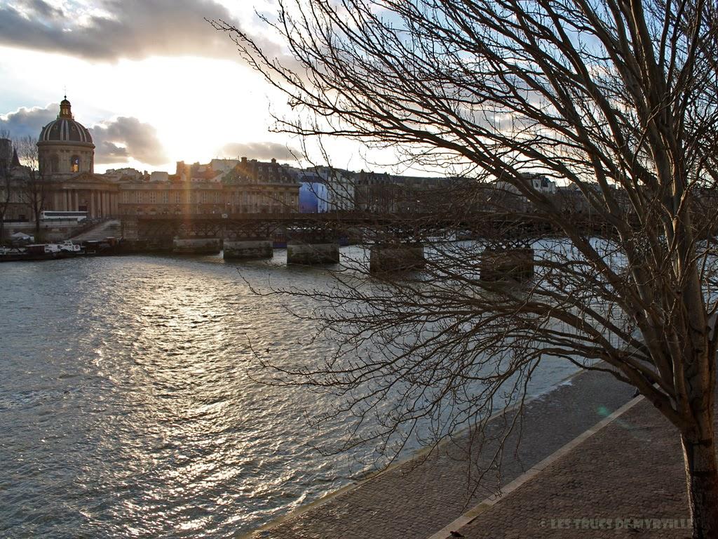 Fond d'écran #2 de FÉVRIER 2014, avec et sans le calendrier du mois - Pont des Arts (photo janv. 2014)