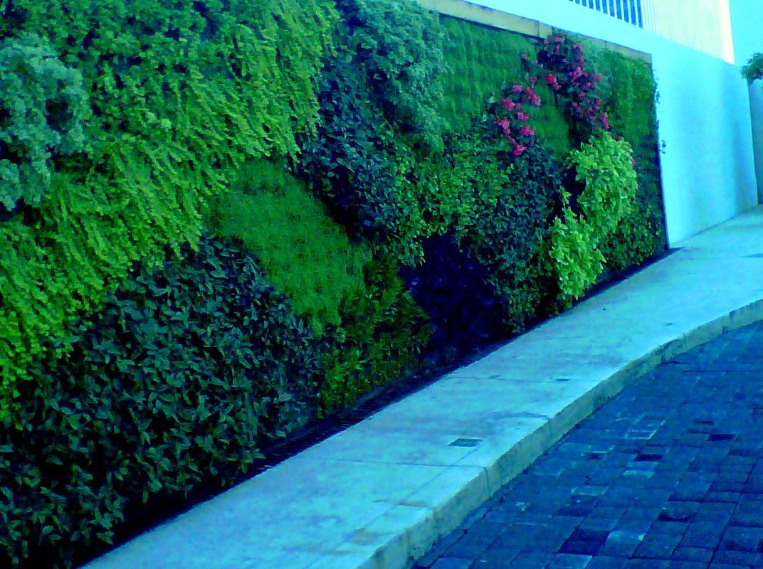Jardines verticales monterrey muro verde andares for Verde vertical jardines verticales