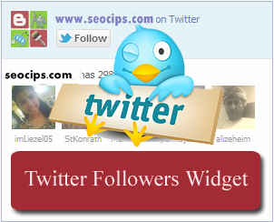 Widget Follower Twitter di Blog.