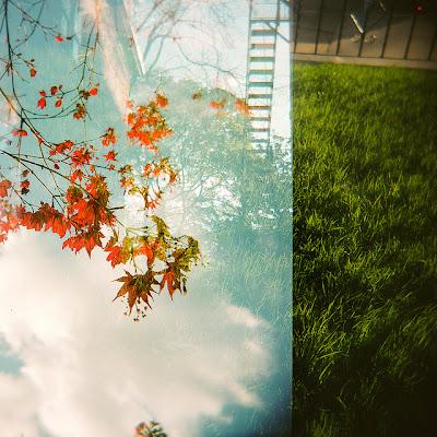 stagioni in bilico