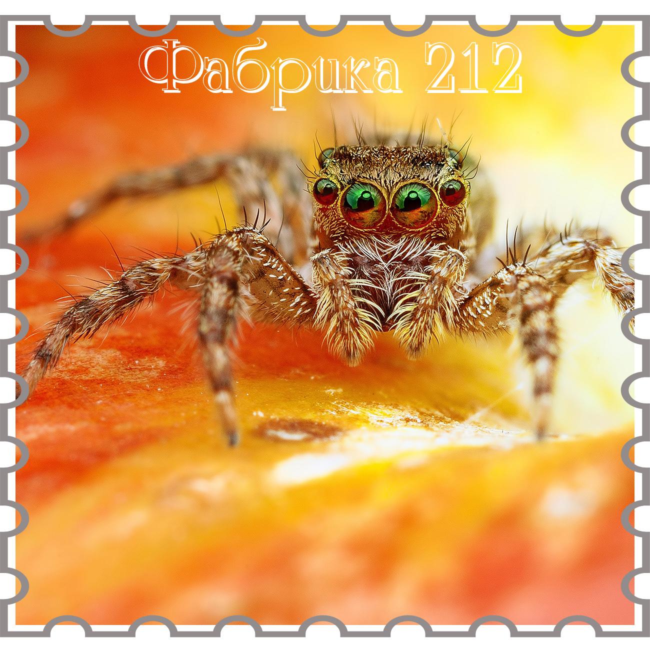 http://fabrika212.blogspot.de/2015/08/blog-post_20.html