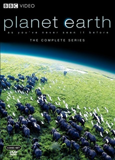 planet earth 2 episode 1 1080p