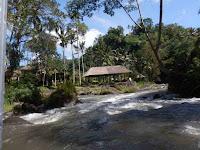 See the nice organic resturand of Royal Pita Maha from Ayung River