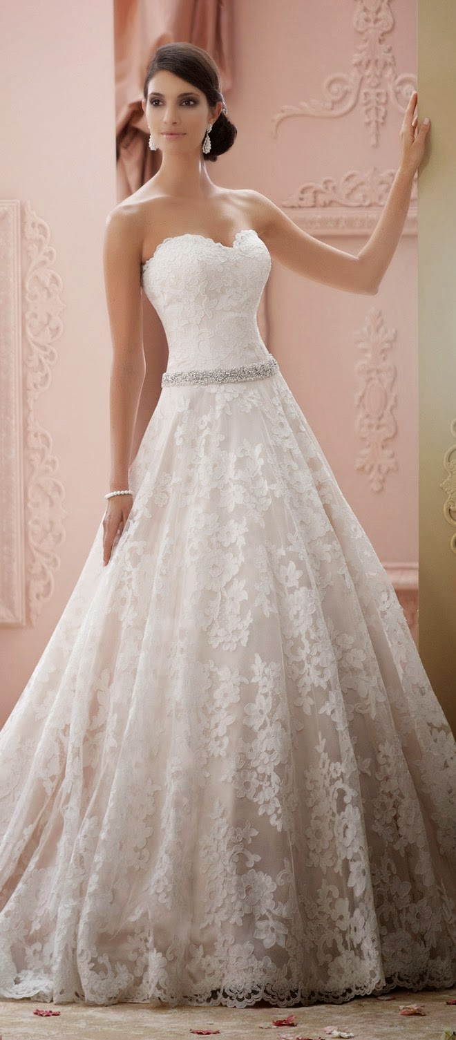Sophia Tolli brought so many beautiful pieces to our ...
