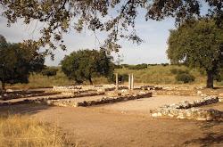 Villa romana de Los Términos, en Monroy