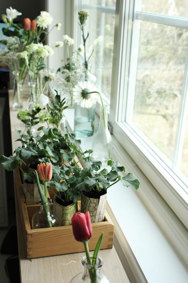 blommor i fönstret, dekoration, fönster