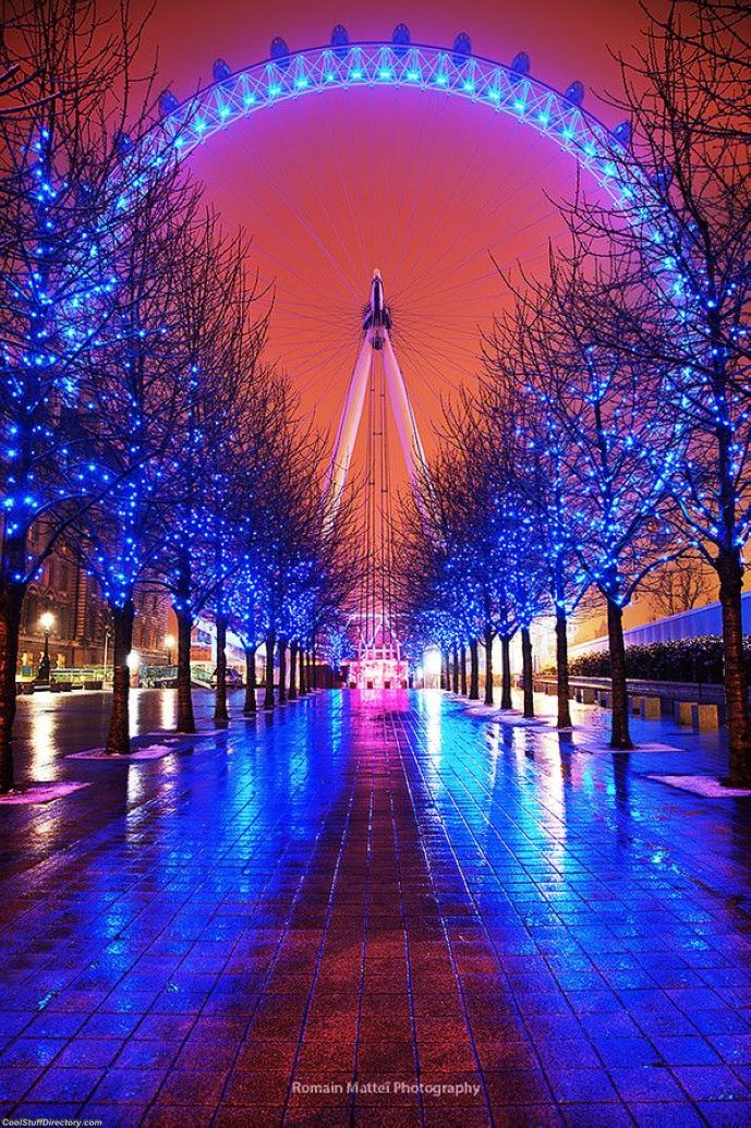 34. London Iris by Romain Matteï Photography