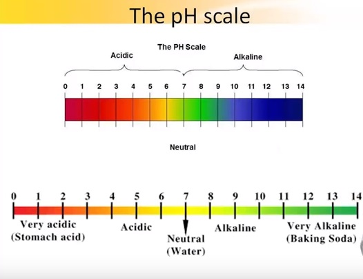 introduction to ph scale Introduction and definitions: the ph scale measures how acidic or basic a substance is the ph scale ranges from 0 to 14 a ph of 7 is neutral a ph less than 7 is acidic a ph greater than 7 is basic the ph scale is.