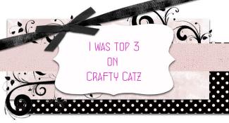 CRAFT CATZ