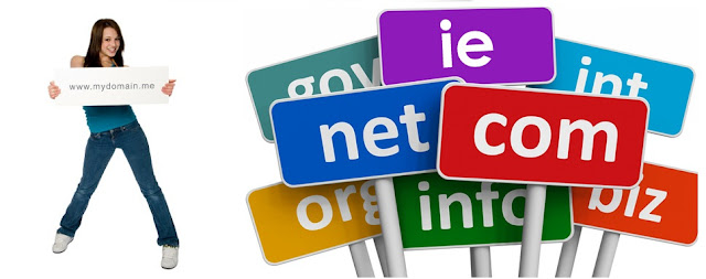 What is a Domain Name format ?