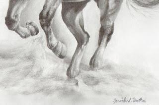 horse drawing, equine artwork, equestrian art