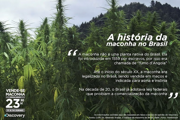 A Maconha era legalizada no Brasil