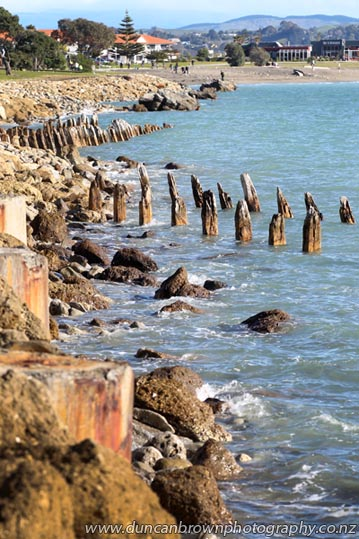 Water-worn piles, remains of the sea defence wall built by the former Hawke's Bay Provincial Council, Hardinge Rd, Napier photograph