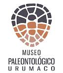 MUSEO PALEONTOLOGICO URUMACO