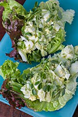 Avocado + Egg Salad Lettuce Wraps