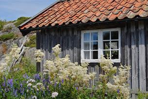Trädgårdsåret 2012 Del II