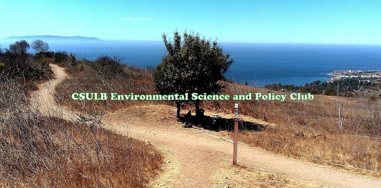 CSULB Environmental Club