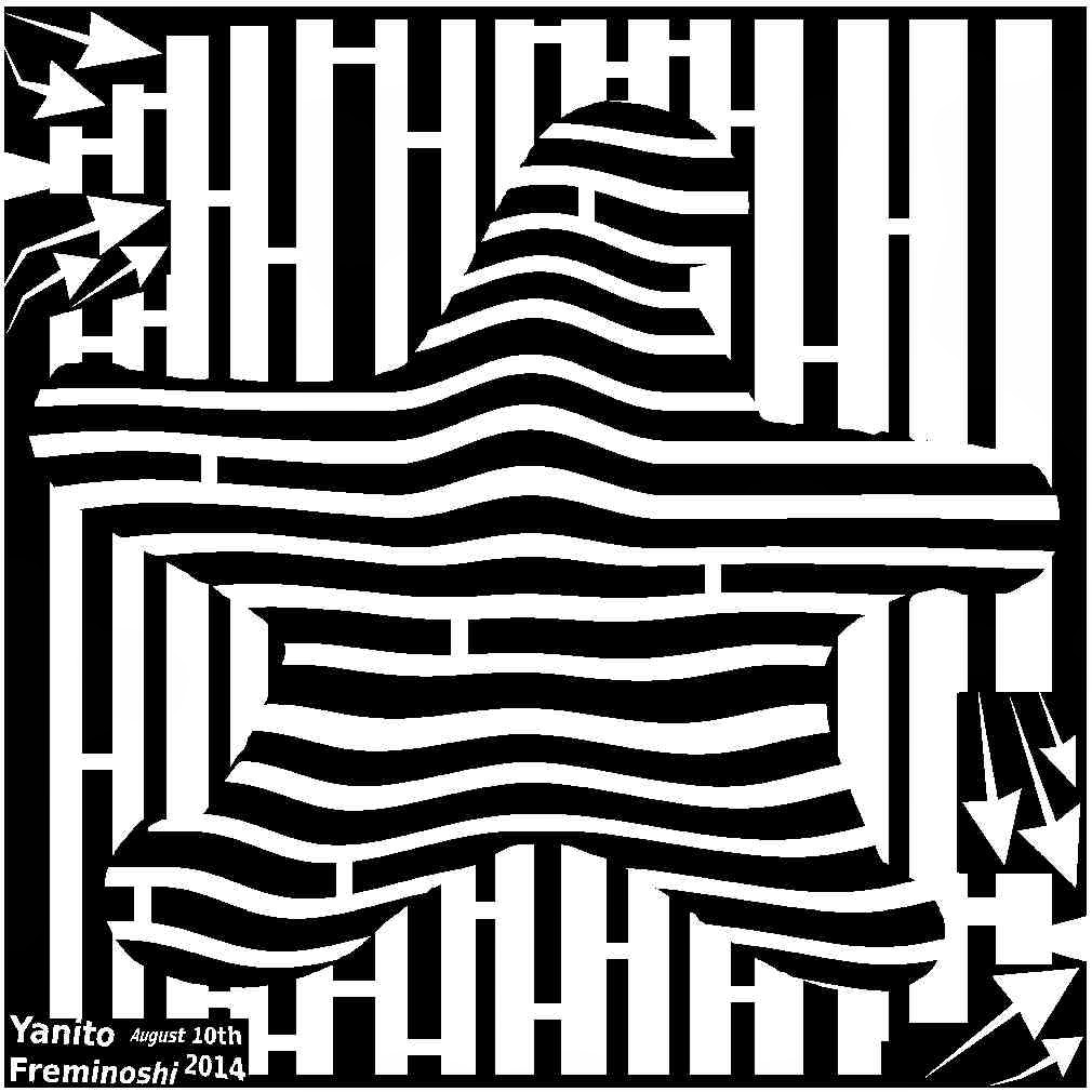 black and white starfish maze