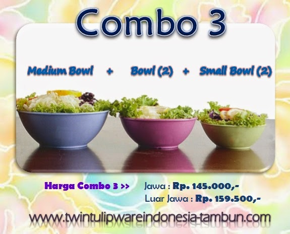 Promo Combo 3 Tulipware Tupperware - Pemilu 2014, Small Bowl, Bowl, Medium Bowl