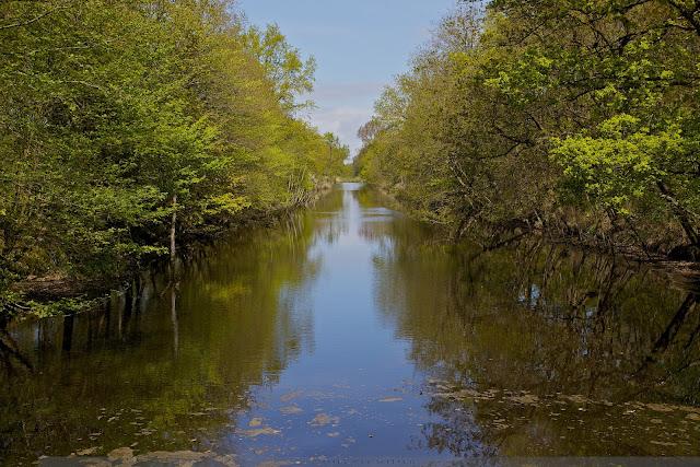 Robbenoordbos Den Oever Nederland - Robbenoord Forest @ Den Oever Netherlands