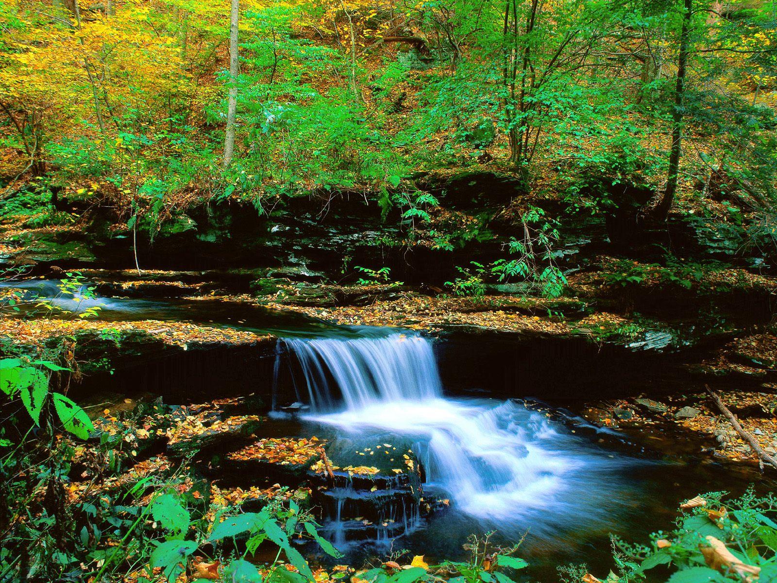 Hd widescreen wallpapers beautiful desktop waterfall for Waterfall landscape