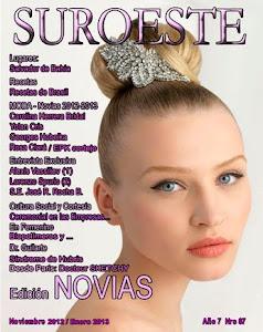 Archivo revista SUROESTE