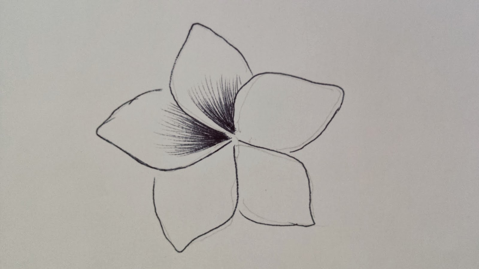Search results for flowers simple drawings calendar 2015 for Simple carnation drawing