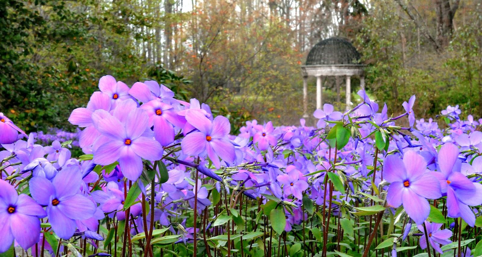 Longwood Gardens Isnu0027t U0027justu0027 Flowers