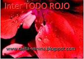 inter todo rojo organiza Vanina