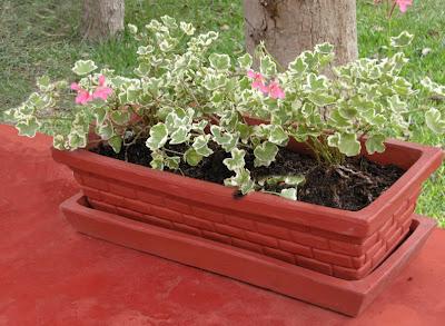 Arte y decoraci n jardinera grande - Jardineras de terracota ...