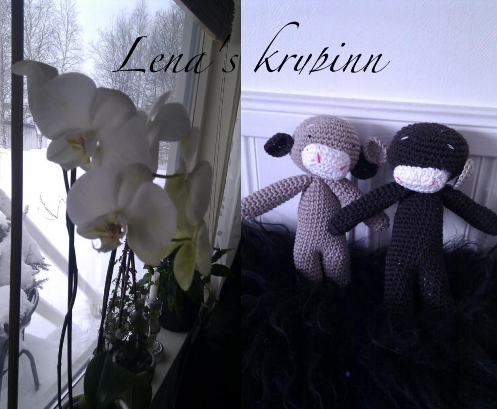 Lena's krypinn..